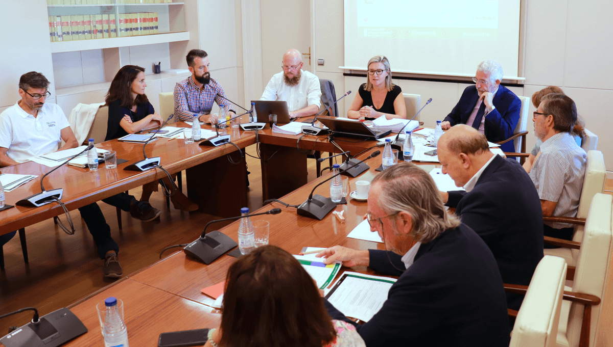 Celebración de la segunda reunión del Comité Técnico.