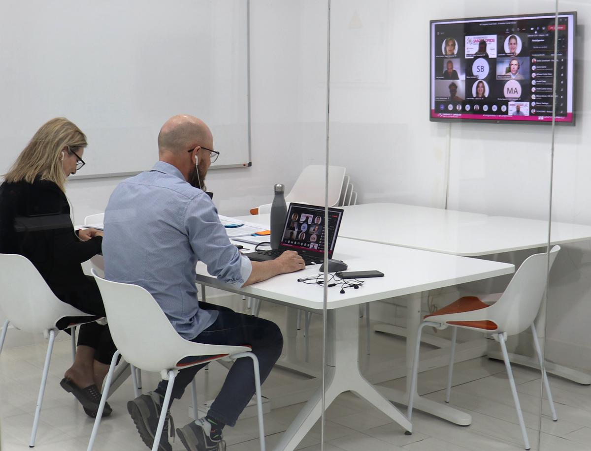 Segunda reunión online del Comité Técnico
